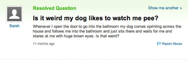 50 of the Most Ridiculous Questions Ever Asked on Yahoo